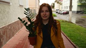 Una muchacha camina alrededor de la ciudad con una planta almacen de metraje de vídeo