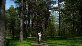 Una muchacha con un cochecito camina a lo largo de la trayectoria del parque a lo largo de los árboles y de los céspedes verdes almacen de metraje de vídeo