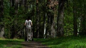 Una muchacha con un cochecito camina a lo largo de la trayectoria del parque a lo largo de los árboles y de los céspedes verdes almacen de video