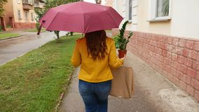 Una muchacha con un paraguas camina alrededor de la ciudad con una planta metrajes