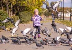 Una muchacha corre para dispersar palomas Imágenes de archivo libres de regalías