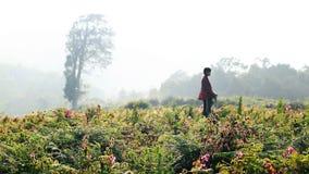 Una muchacha de la aldea en el prado de la flor imagen de archivo