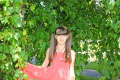 Una muchacha debajo del árbol de abedul en un vestido rojo Foto de archivo