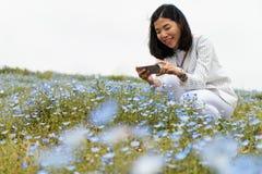 Una muchacha en el traje blanco está tomando una foto de la flor Garde del nemophila Fotografía de archivo