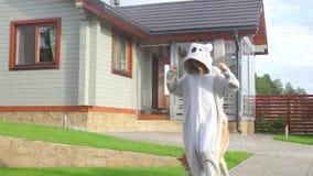 Una muchacha en un traje de la panda corre con un perro a lo largo de la trayectoria almacen de metraje de vídeo
