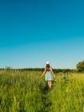 Una muchacha en un vestido azul con una hierba alta que camina el campo y que toca su mano de las espiguillas Fotografía de archivo libre de regalías