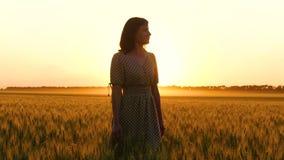 Una muchacha en un vestido hermoso camina en un campo de trigo de oro en la cámara lenta durante puesta del sol metrajes