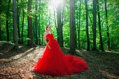 Una muchacha en un vestido rojo largo y una corona real Imagen de archivo