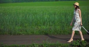 Una muchacha en un vestido y un sombrero camina a través de un campo verde de la hierba almacen de video