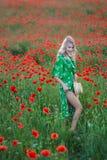 Una muchacha hermosa con el pelo largo y la piel natural, colocándose en un campo de amapolas rojas y sosteniendo una amapola roj foto de archivo