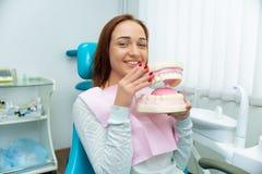 Una muchacha hermosa con el pelo rojo se est? sentando en una cl?nica dental y est? llevando a cabo un modelo agrandado de diente fotos de archivo