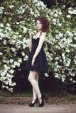 Una muchacha hermosa en un vestido negro presenta cerca de un arbusto con las flores blancas Imagenes de archivo