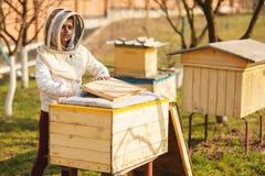 Una muchacha joven del apicultor est? trabajando con las abejas y est? examinando la colmena de la abeja despu?s de invierno imagen de archivo libre de regalías