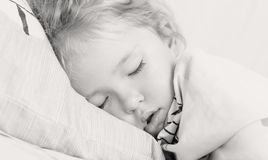 Una muchacha más pequeña está durmiendo Imagen de archivo libre de regalías