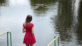 Una muchacha muy hermosa en un vestido rojo se está colocando en un embarcadero cerca de un pequeño lago almacen de metraje de vídeo