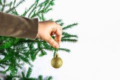 Una muchacha que cuelga una bola de la Navidad en un árbol de navidad en un fondo blanco Imagen de archivo libre de regalías