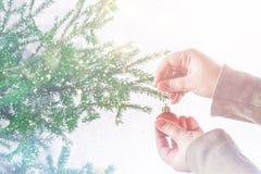 Una muchacha que cuelga una bola de la Navidad en un árbol de navidad en un fondo blanco Foto de archivo libre de regalías