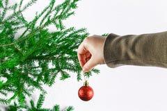Una muchacha que cuelga una bola de la Navidad en un árbol de navidad en un fondo blanco Foto de archivo