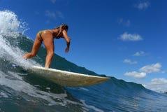 Una muchacha que practica surf imagen de archivo libre de regalías