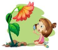 Una muchacha que sostiene una lupa debajo de una flor Fotografía de archivo libre de regalías