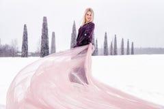 Una muchacha se coloca en un campo en invierno El vestido del tren desarrolla el viento foto de archivo libre de regalías
