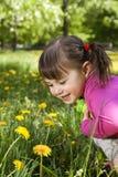 Una muchacha sonriente con el diente de león Imagenes de archivo