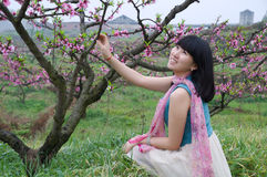 Una muchacha sonriente en el jardín del melocotón Fotografía de archivo