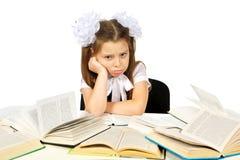 Una muchacha y libros Imagen de archivo libre de regalías