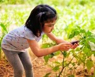 Una muchacha y su pequeña berenjena fotos de archivo