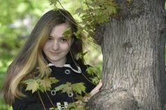 Una muchacha y un árbol viejo grande Imagenes de archivo