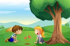Una muchacha y un muchacho que miran la planta crecen Foto de archivo