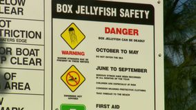 Una muestra sobre los peligros de las medusas de la caja metrajes