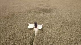 Una mujer camina el campo de trigo en un vestido blanco y dirige su mano a lo largo de los tops de espigas del trigo metrajes