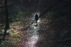 Una mujer camina solamente en un bosque oscuro imagen de archivo