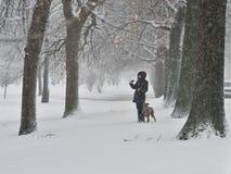 Una mujer con el perro Fotos de archivo