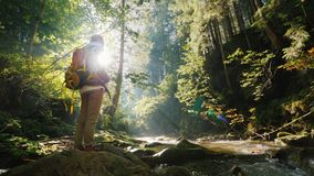 Una mujer con una mochila detrás de ella admira el paisaje hermoso en el bosque almacen de metraje de vídeo