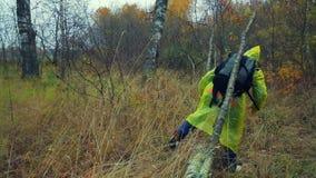 Una mujer con una mochila en pasos amarillos de un impermeable sobre un árbol caido en el bosque almacen de metraje de vídeo