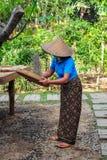 Una mujer de Balinesse que trabaja con los granos de café sin procesar del luwak Foto de archivo libre de regalías