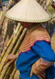 Una mujer de Hmong de la flor está vendiendo el bambú en Bac Ha Foto de archivo libre de regalías