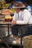 Una mujer de mediana edad que vende conejillos de Indias Imágenes de archivo libres de regalías