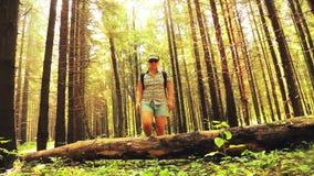 Una mujer del turista camina sobre un árbol caido en un bosque almacen de metraje de vídeo