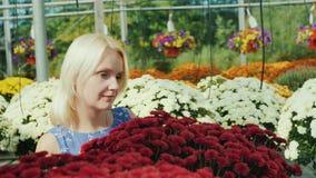 Una mujer elige las flores en el centro de jardinería Cuarto de niños de la flor almacen de video