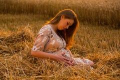 Una mujer embarazada joven entre el campo de trigo Imagen de archivo
