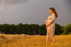 Una mujer embarazada joven entre el campo de trigo Foto de archivo