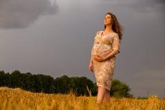 Una mujer embarazada joven entre el campo de trigo Imágenes de archivo libres de regalías