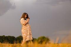 Una mujer embarazada joven entre el campo de trigo Foto de archivo libre de regalías
