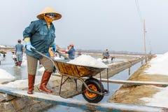 Una mujer empuja una carretilla de la sal en los campos de la sal de Hon Khoi Fotos de archivo