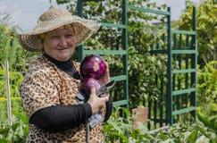 Una mujer en el país muestra la berenjena de la cosecha Fotos de archivo