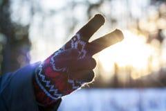 Una mujer en guantes lleva a cabo su mano en el fondo de un paisaje del invierno al aire libre Las manos se cierran para arriba E imagen de archivo