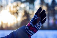 Una mujer en guantes lleva a cabo su mano en el fondo de un paisaje del invierno al aire libre Las manos se cierran para arriba E fotografía de archivo